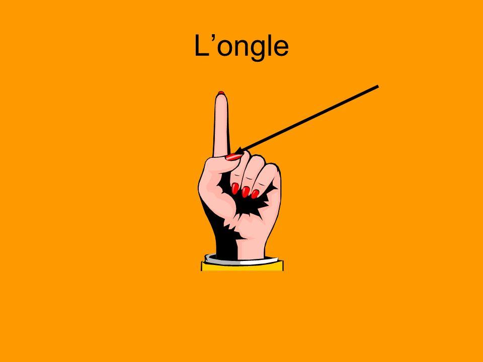 Longle