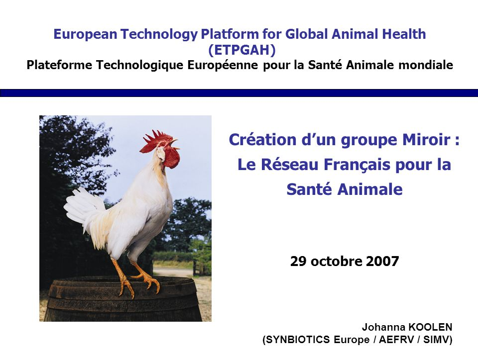 Création dun groupe Miroir : Le Réseau Français pour la Santé Animale 29 octobre 2007 European Technology Platform for Global Animal Health (ETPGAH) Plateforme Technologique Européenne pour la Santé Animale mondiale Johanna KOOLEN (SYNBIOTICS Europe / AEFRV / SIMV)