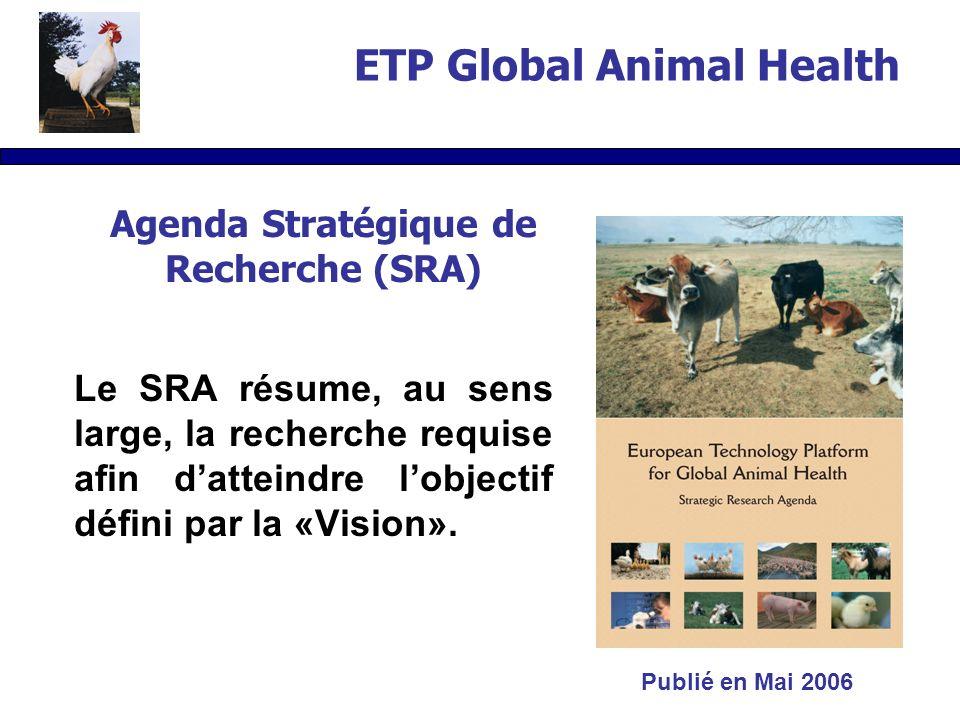 Agenda Stratégique de Recherche (SRA) Le SRA résume, au sens large, la recherche requise afin datteindre lobjectif défini par la «Vision».