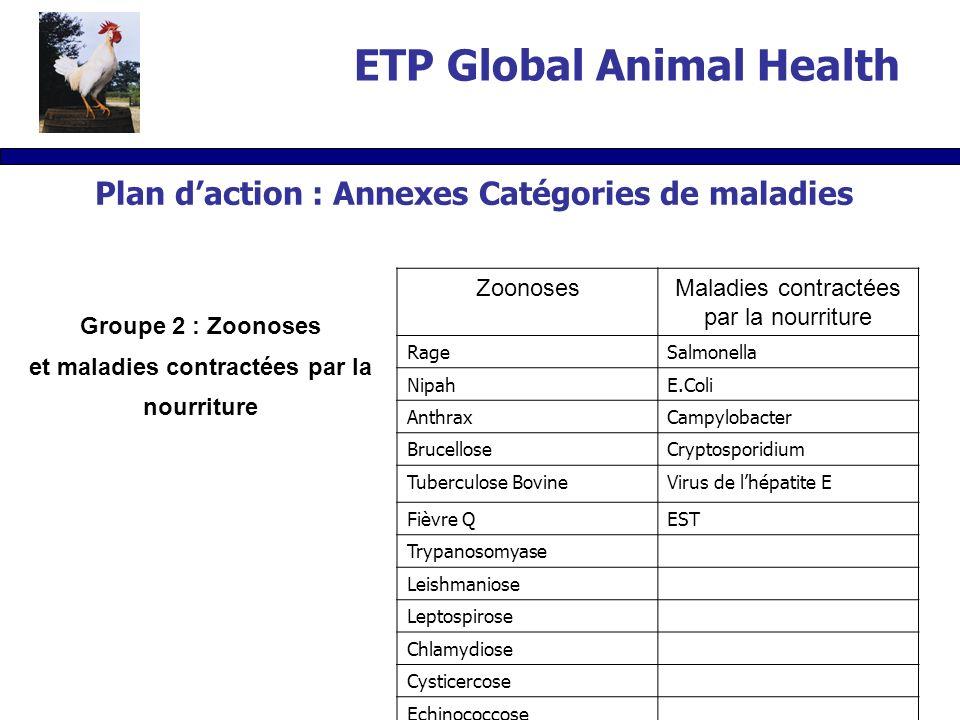 Groupe 2 : Zoonoses et maladies contractées par la nourriture ZoonosesMaladies contractées par la nourriture RageSalmonella NipahE.Coli AnthraxCampylobacter BrucelloseCryptosporidium Tuberculose BovineVirus de lhépatite E Fièvre QEST Trypanosomyase Leishmaniose Leptospirose Chlamydiose Cysticercose Echinococcose Plan daction : Annexes Catégories de maladies ETP Global Animal Health