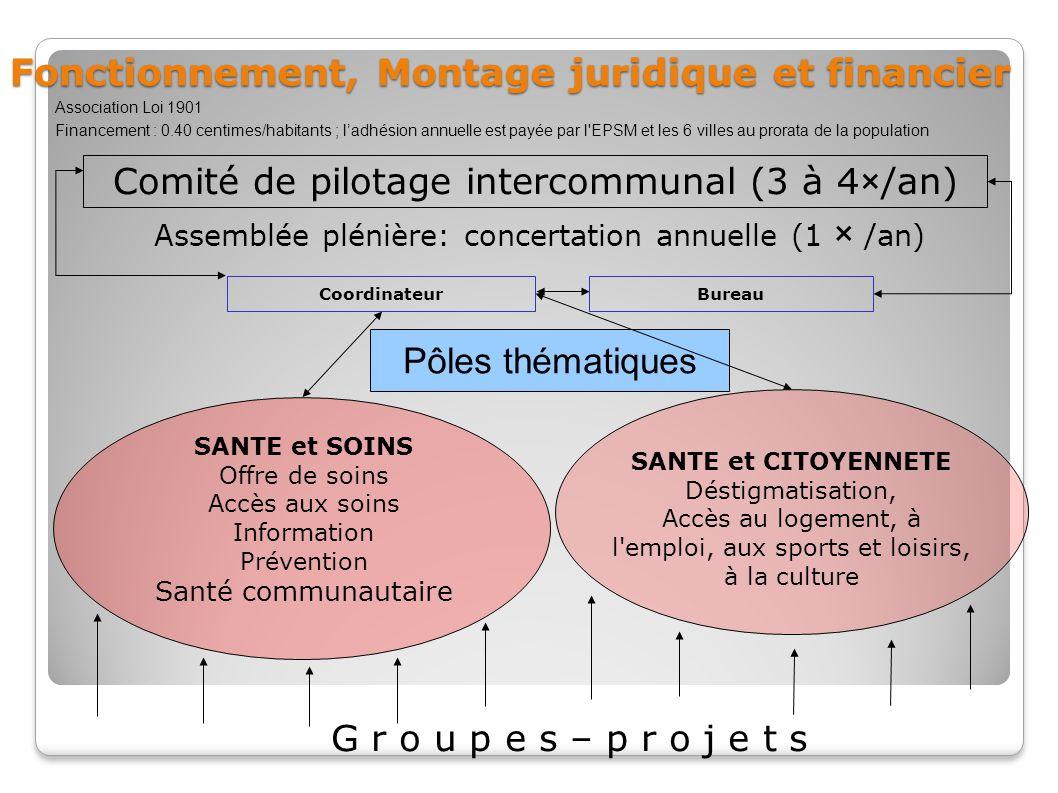 Comité de pilotage intercommunal (3 à 4×/an) Coordinateur SANTE et SOINS Offre de soins Accès aux soins Information Prévention Santé communautaire SAN