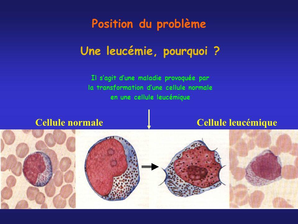 Position du problème Une leucémie, pourquoi ? Il sagit dune maladie provoquée par la transformation dune cellule normale en une cellule leucémique Cel