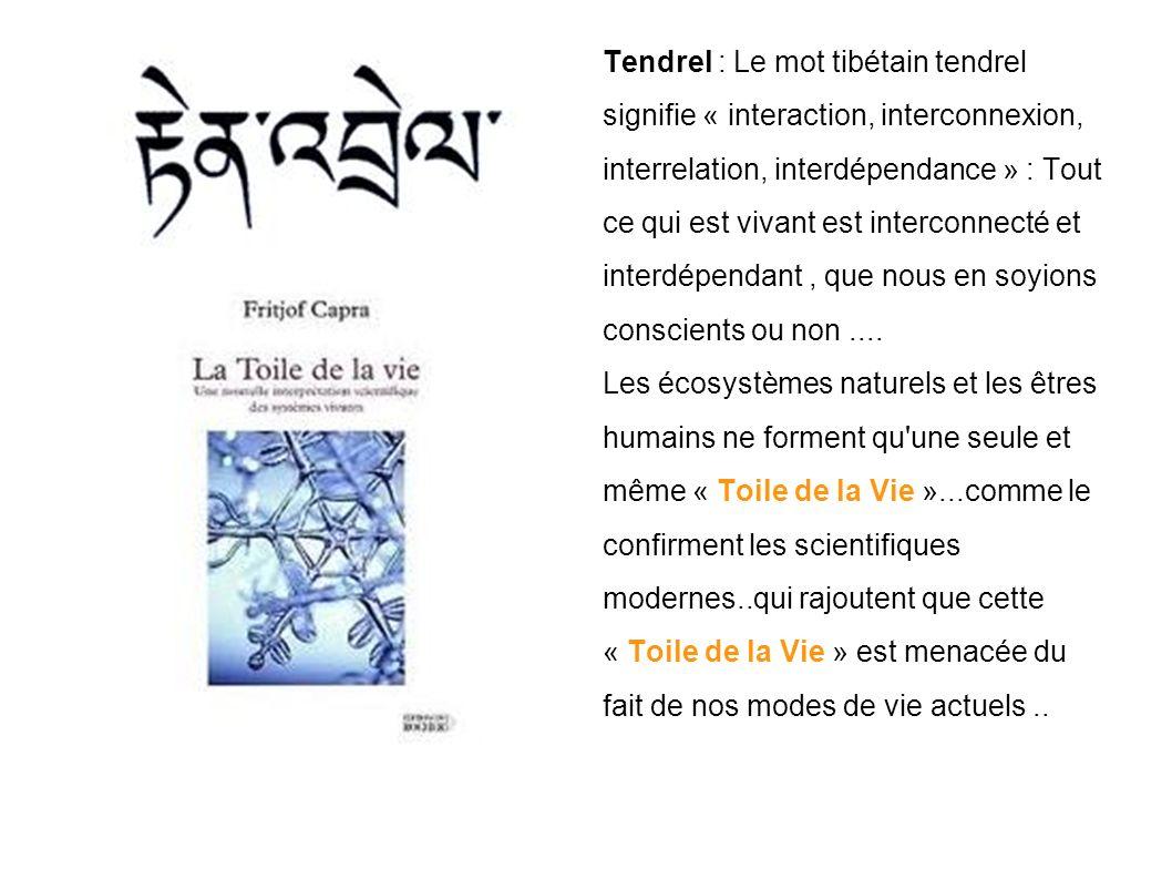 Tendrel : Le mot tibétain tendrel signifie « interaction, interconnexion, interrelation, interdépendance » : Tout ce qui est vivant est interconnecté et interdépendant, que nous en soyions conscients ou non....