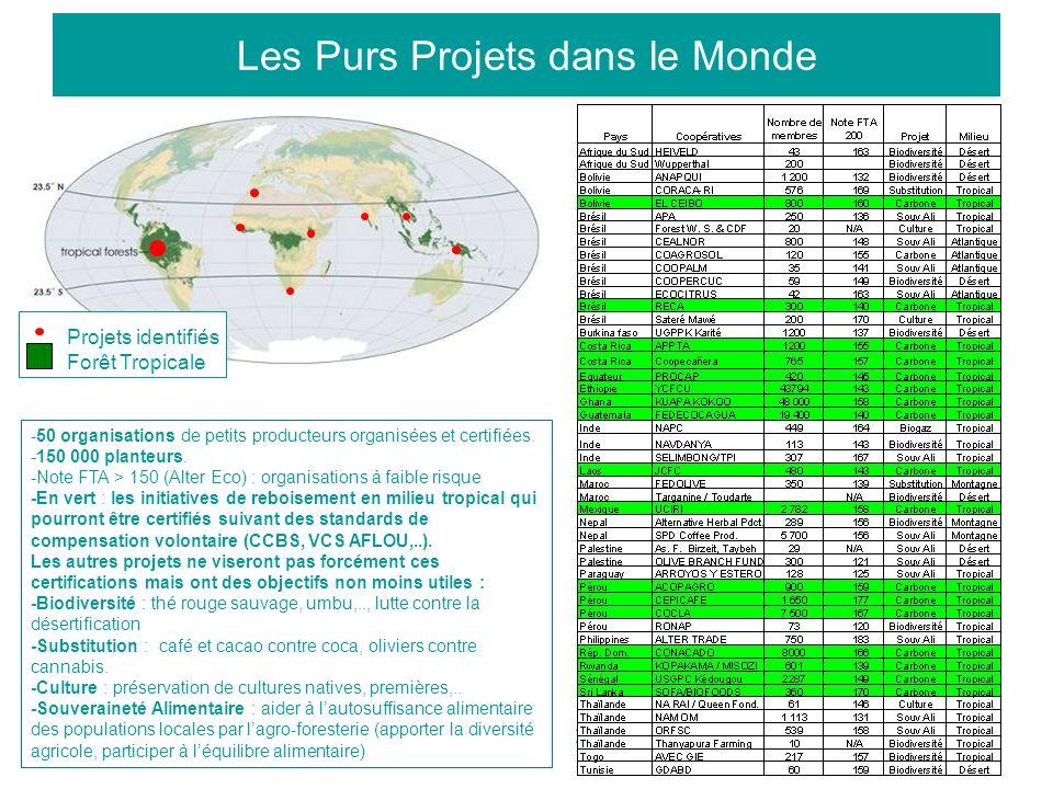 12 Les Purs Projets dans le Monde Projets identifiés Forêt Tropicale -50 organisations de petits producteurs organisées et certifiées. -150 000 plante