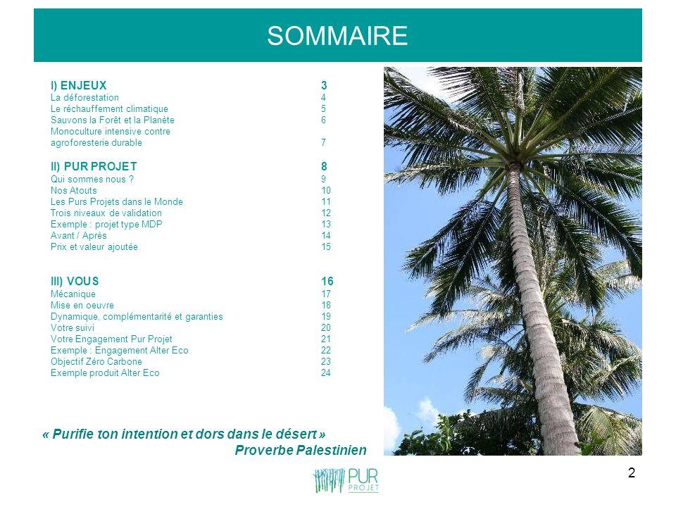 2 SOMMAIRE I) ENJEUX3 La déforestation4 Le réchauffement climatique5 Sauvons la Forêt et la Planète6 Monoculture intensive contre agroforesterie durab