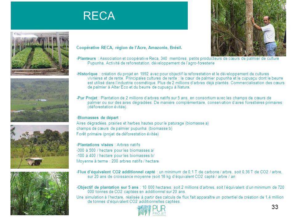 33 RECA Coopérative RECA, région de lAcre, Amazonie, Brésil. -Planteurs : Association et coopérative Reca, 340 membres, petits producteurs de cœurs de