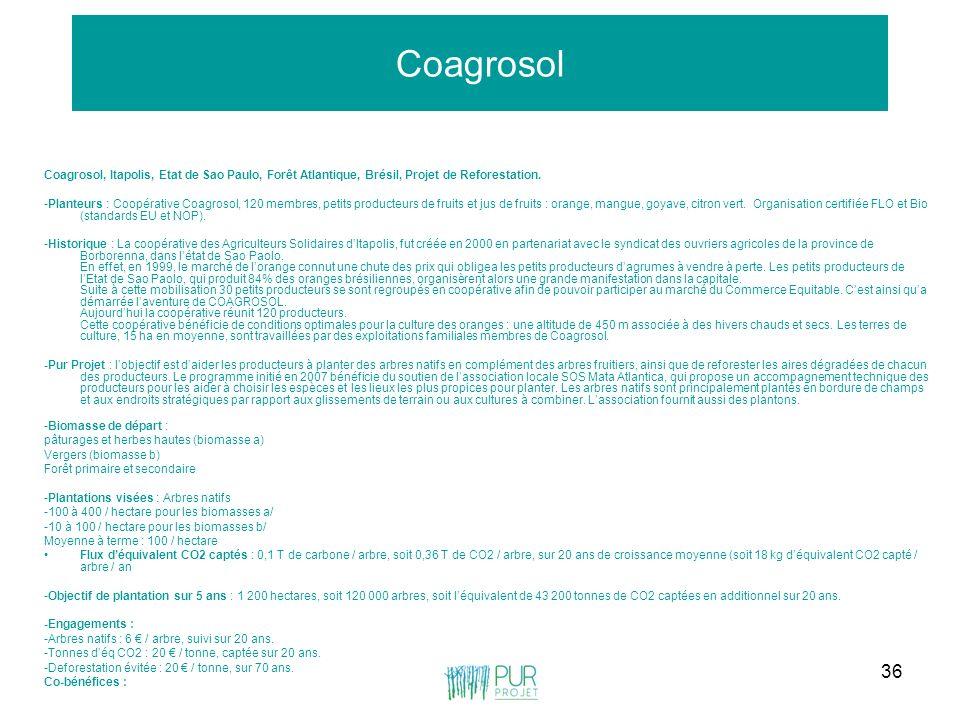 36 Coagrosol Coagrosol, Itapolis, Etat de Sao Paulo, Forêt Atlantique, Brésil, Projet de Reforestation. -Planteurs : Coopérative Coagrosol, 120 membre