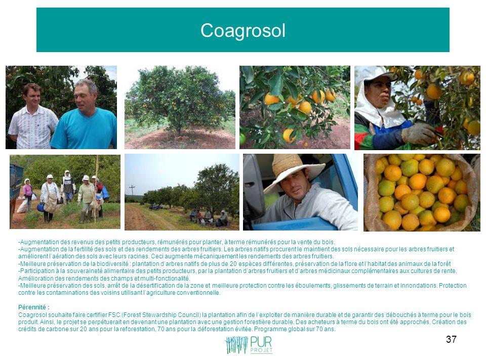 37 Coagrosol -Augmentation des revenus des petits producteurs, rémunérés pour planter, à terme rémunérés pour la vente du bois. -Augmentation de la fe