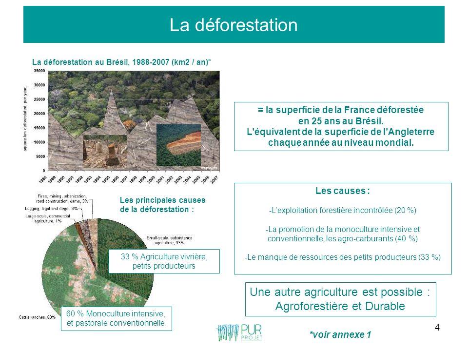 4 La déforestation La déforestation au Brésil, 1988-2007 (km2 / an)* = la superficie de la France déforestée en 25 ans au Brésil. Léquivalent de la su