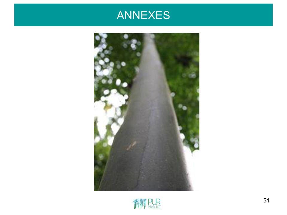 51 ANNEXES