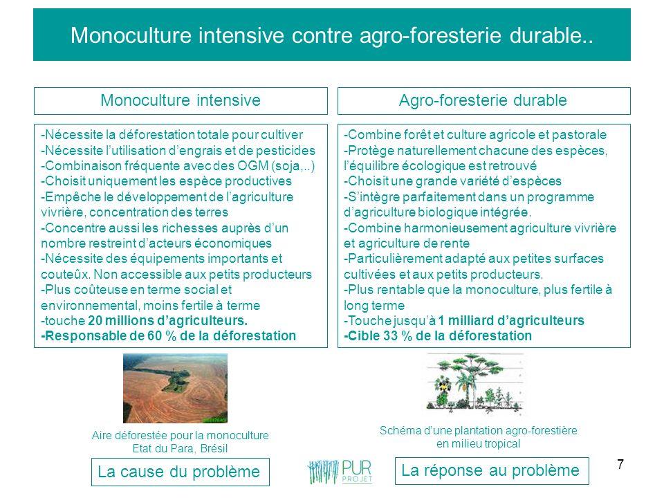 7 Monoculture intensive contre agro-foresterie durable.. Monoculture intensiveAgro-foresterie durable -Nécessite la déforestation totale pour cultiver