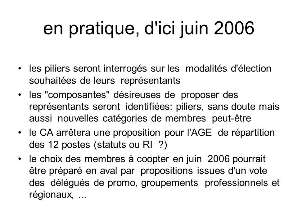 en pratique, d'ici juin 2006 les piliers seront interrogés sur les modalités d'élection souhaitées de leurs représentants les