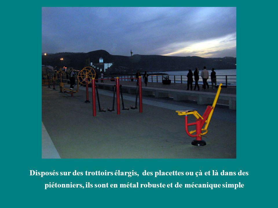 Disposés sur des trottoirs élargis, des placettes ou çà et là dans des piétonniers, ils sont en métal robuste et de mécanique simple