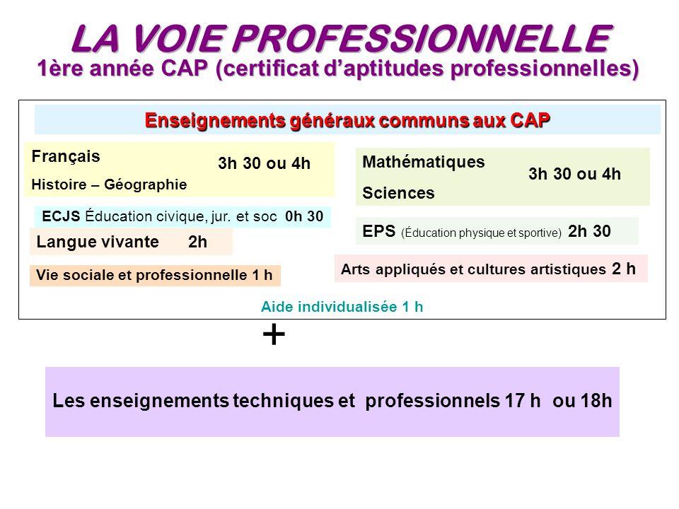 Enseignements généraux communs aux CAP Français Histoire – Géographie Mathématiques Sciences EPS (Éducation physique et sportive) 2h 30 Langue vivante