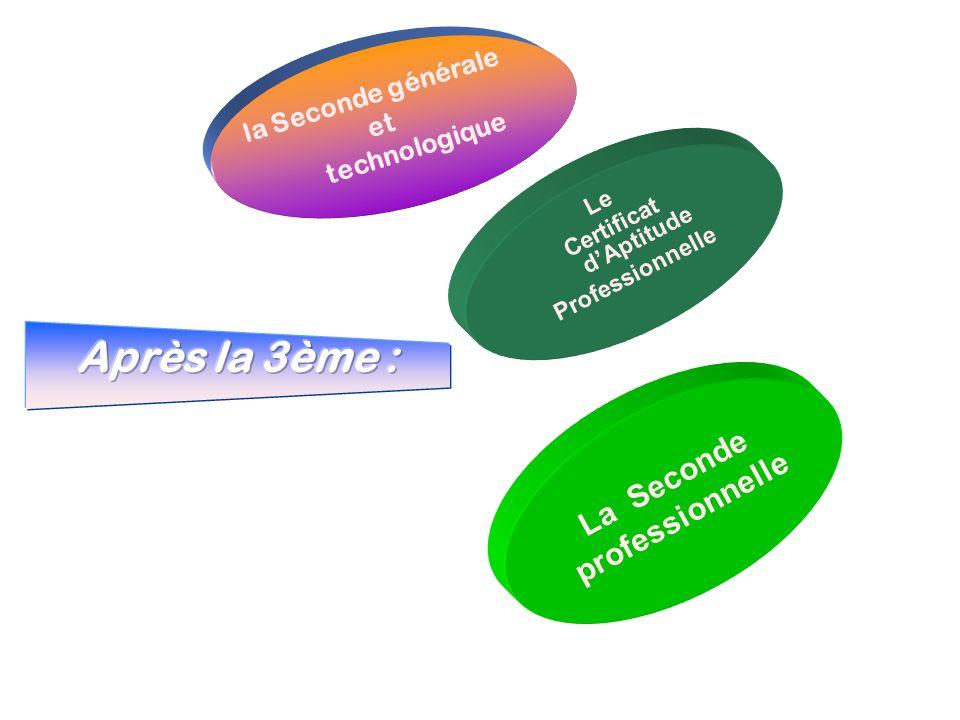 la Seconde générale et technologique L e C e r t i f i c a t d A p t i t u d e P r o f e s s i o n n e l l e L a S e c o n d e p r o f e s s i o n n e