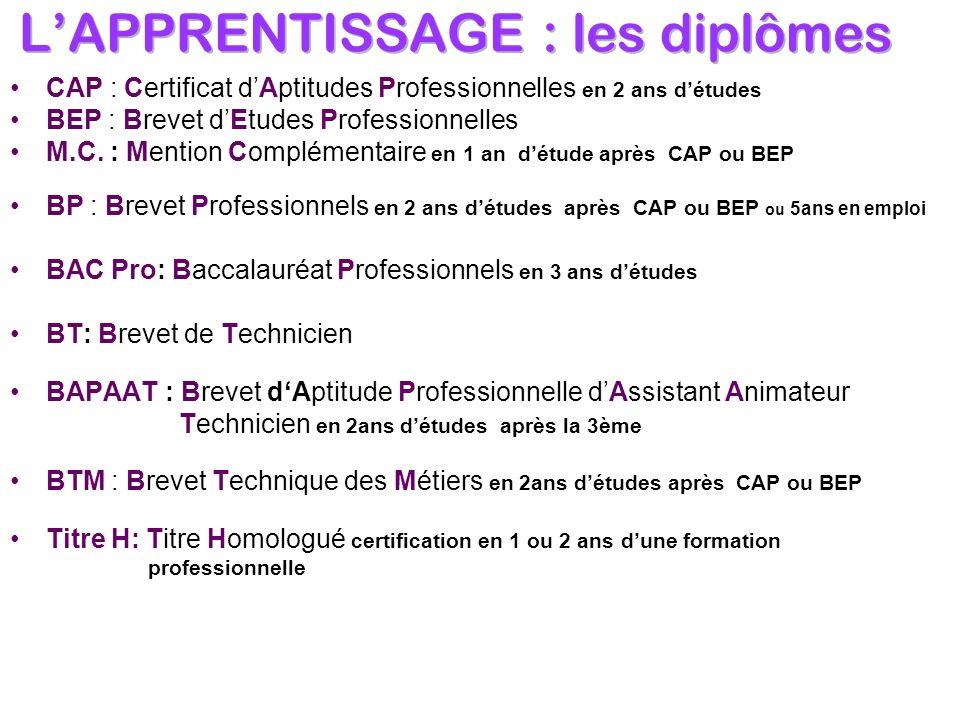 CAP : Certificat dAptitudes Professionnelles en 2 ans détudes BEP : Brevet dEtudes Professionnelles M.C. : Mention Complémentaire en 1 an détude après