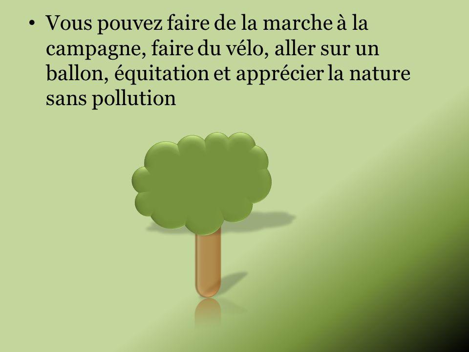 Vous pouvez faire de la marche à la campagne, faire du vélo, aller sur un ballon, équitation et apprécier la nature sans pollution