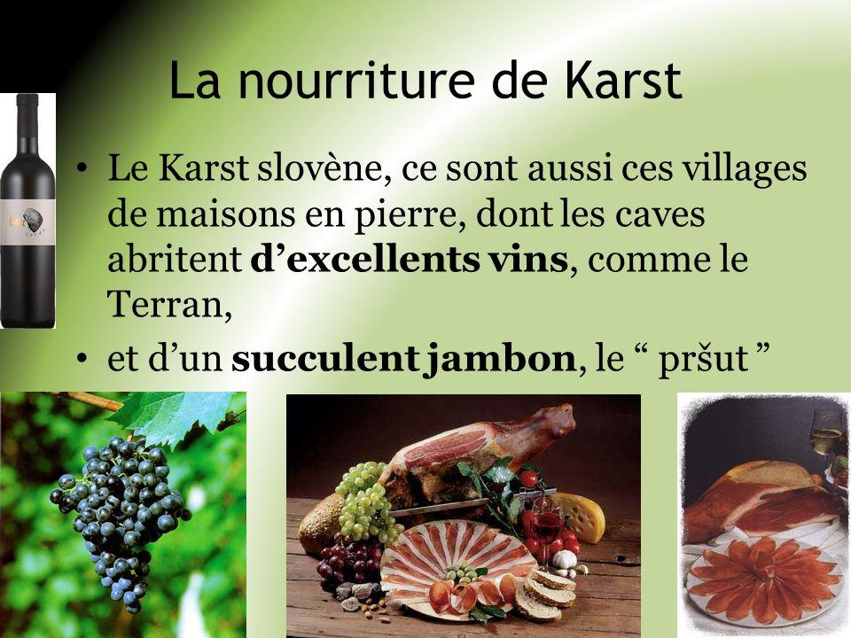 La nourriture de Karst Le Karst slovène, ce sont aussi ces villages de maisons en pierre, dont les caves abritent dexcellents vins, comme le Terran, e