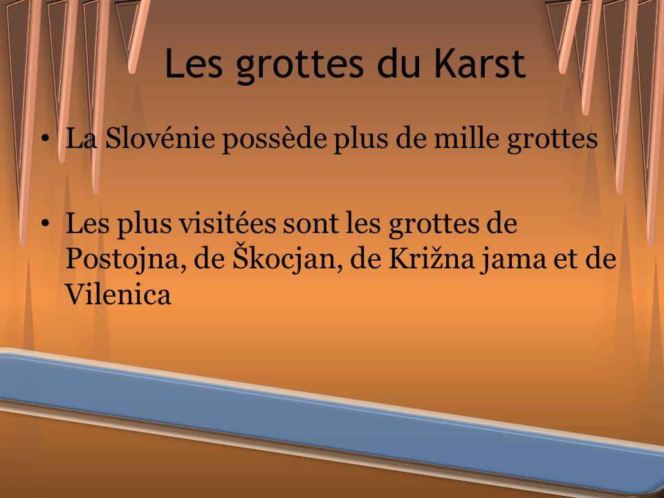 Les grottes du Karst La Slovénie possède plus de mille grottes Les plus visitées sont les grottes de Postojna, de Škocjan, de Križna jama et de Vileni