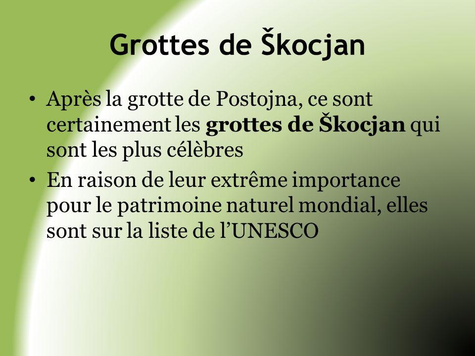 Grottes de Škocjan Après la grotte de Postojna, ce sont certainement les grottes de Škocjan qui sont les plus célèbres En raison de leur extrême impor
