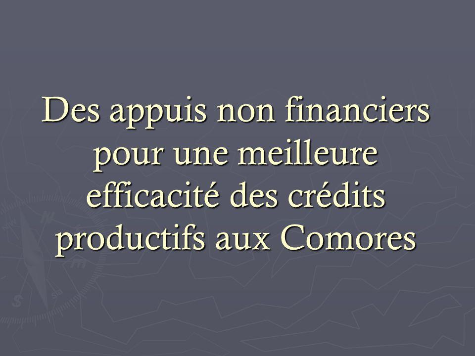 Des appuis non financiers pour une meilleure efficacité des crédits productifs aux Comores