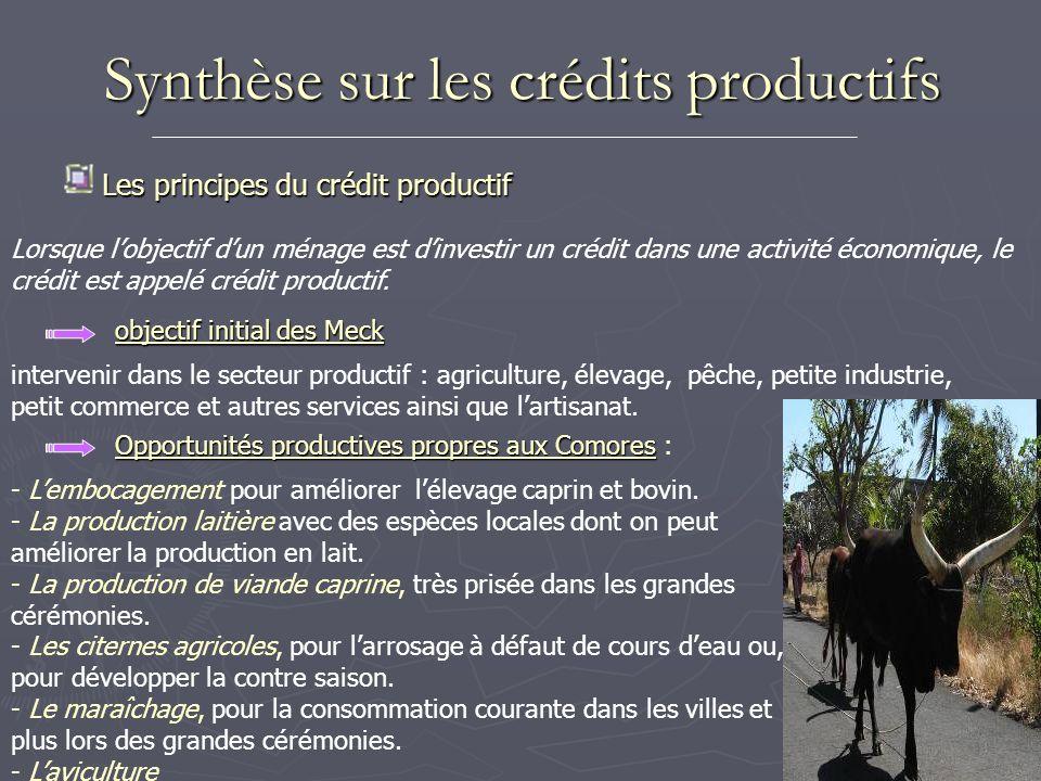 Synthèse sur les crédits productifs Les principes du crédit productif Lorsque lobjectif dun ménage est dinvestir un crédit dans une activité économiqu