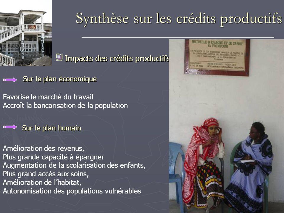 Synthèse sur les crédits productifs Impacts des crédits productifs Sur le plan économique Sur le plan humain Favorise le marché du travail Accroît la