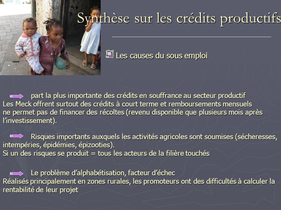 Synthèse sur les crédits productifs Les causes du sous emploi part la plus importante des crédits en souffrance au secteur productif Les Meck offrent