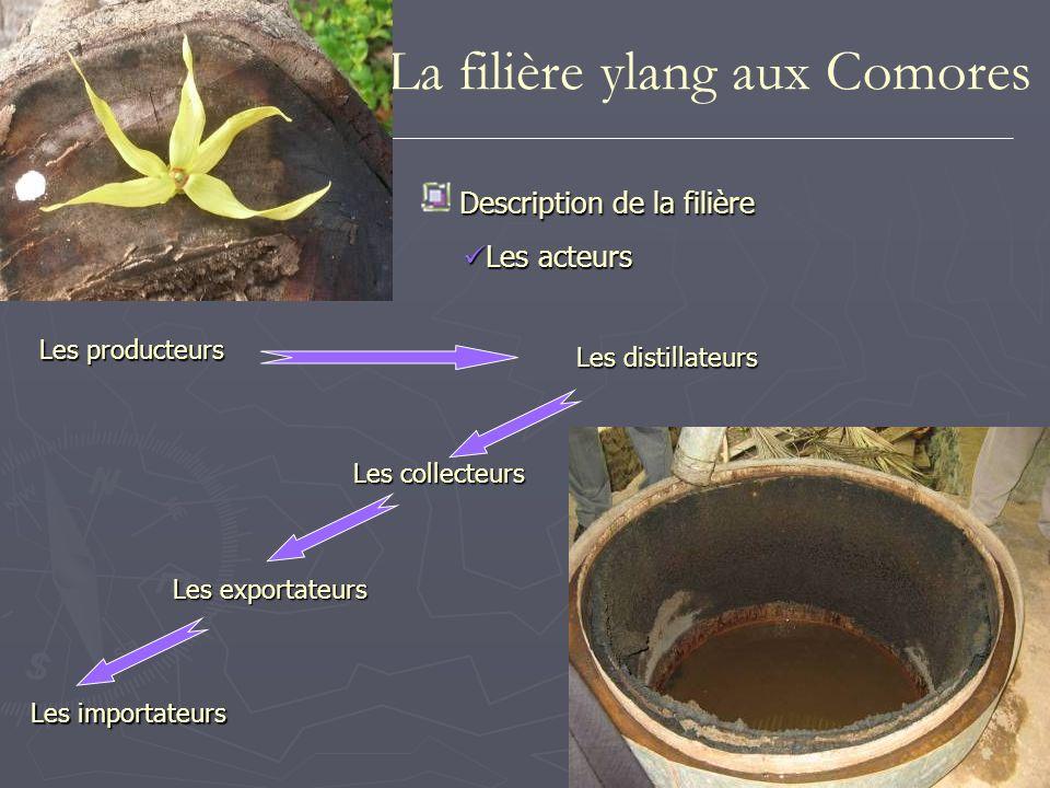 Mis à part la « CVP Bio Com » située à Grande Comore et la société « Bambao » située à Anjouan petites unités artisanales : un à deux alambics fonctionnant à feu nu nbre dalambics fonctionnels sur Anjouan 400 A Grande Comore, il est de 16 Depuis 1992, les quantités totales dhuile essentielle dylang-ylang exportées des Comores se situent aux alentours de 40 t/an prix FOB est de 51 euros/kg toutes qualités confondues La filière ylang aux Comores Description de la filière Les distilleries Les distilleries Les exportations Les exportations