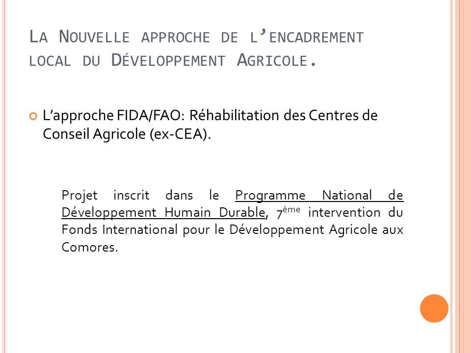 L A N OUVELLE APPROCHE DE L ENCADREMENT LOCAL DU D ÉVELOPPEMENT A GRICOLE. Lapproche FIDA/FAO: Réhabilitation des Centres de Conseil Agricole (ex-CEA)