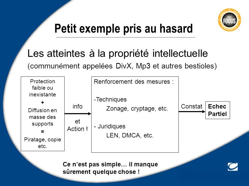Petit exemple pris au hasard Les atteintes à la propriété intellectuelle (communément appelées DivX, Mp3 et autres bestioles) Protection faible ou ine