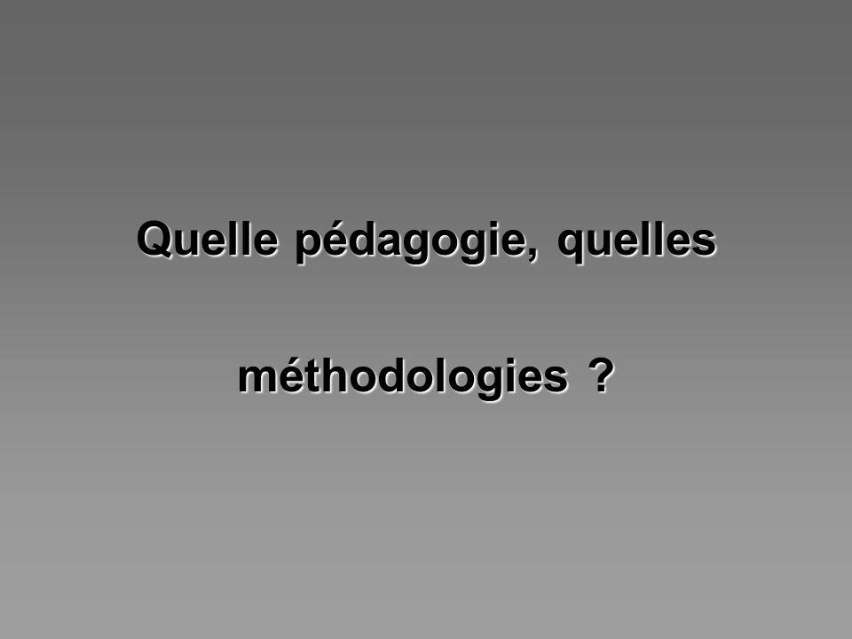 Quelle pédagogie, quelles méthodologies ?