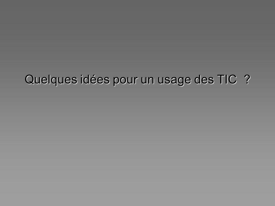 Quelques idées pour un usage des TIC ?