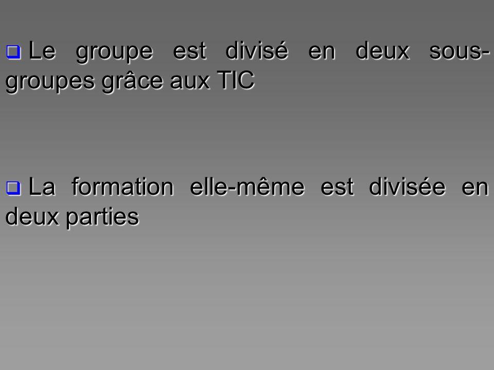 Le groupe est divisé en deux sous- groupes grâce aux TIC Le groupe est divisé en deux sous- groupes grâce aux TIC La formation elle-même est divisée e
