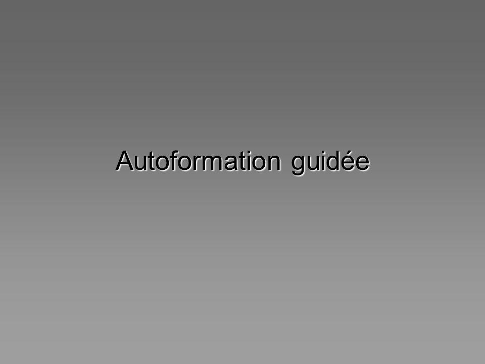 Autoformation guidée