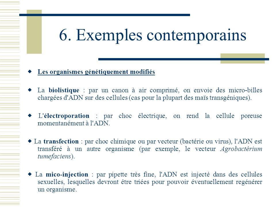 6. Exemples contemporains Les organismes génétiquement modifiés La biolistique : par un canon à air comprimé, on envoie des micro-billes chargées d'AD