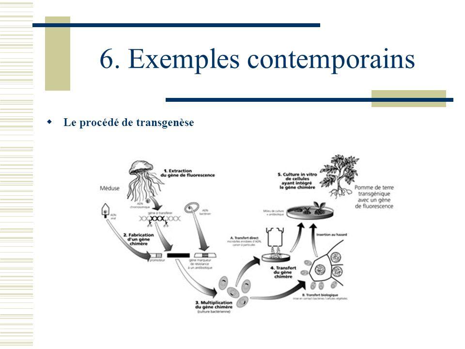 6. Exemples contemporains Le procédé de transgenèse