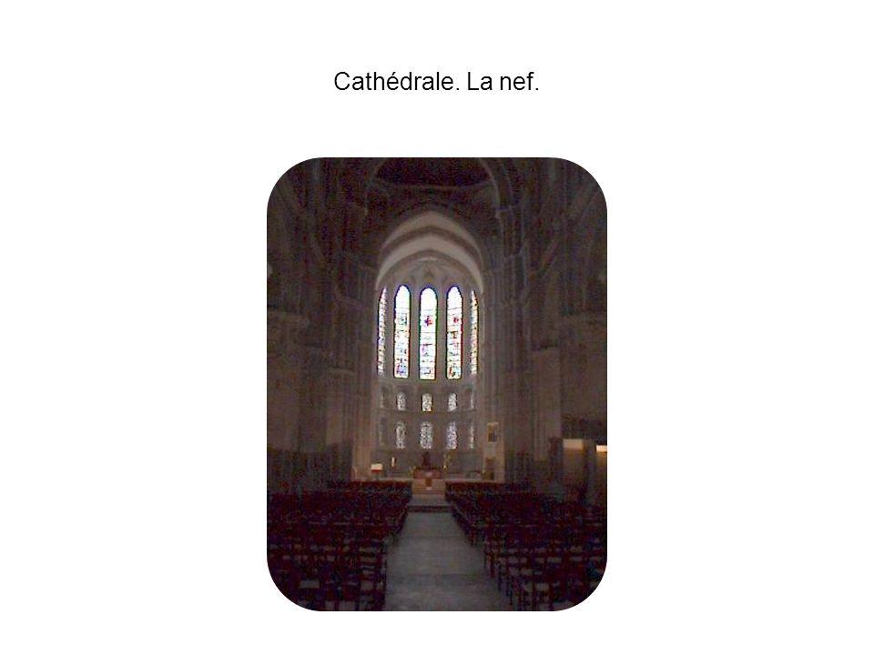 Cathédrale. La nef.