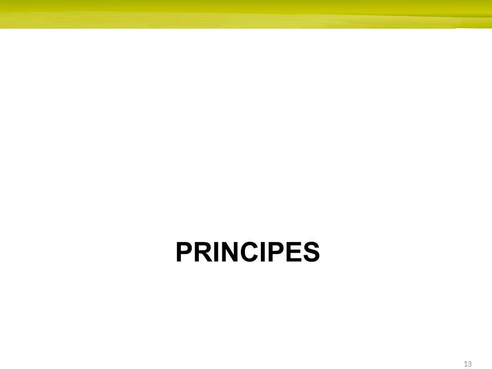 13 PRINCIPES