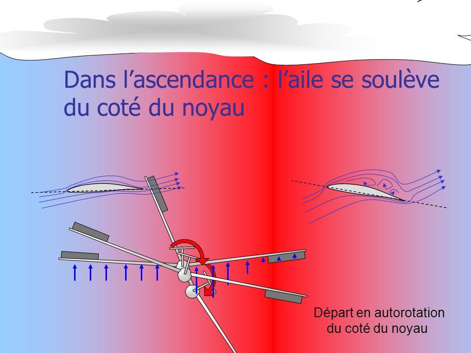 Départ en autorotation du coté du noyau Dans lascendance : laile se soulève du coté du noyau