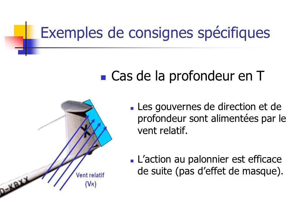 Exemples de consignes spécifiques Cas de la profondeur en T Les gouvernes de direction et de profondeur sont alimentées par le vent relatif.