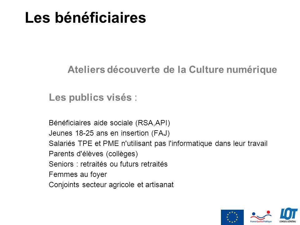 Les bénéficiaires Ateliers découverte de la Culture numérique Les publics visés : Bénéficiaires aide sociale (RSA,API) Jeunes 18-25 ans en insertion (