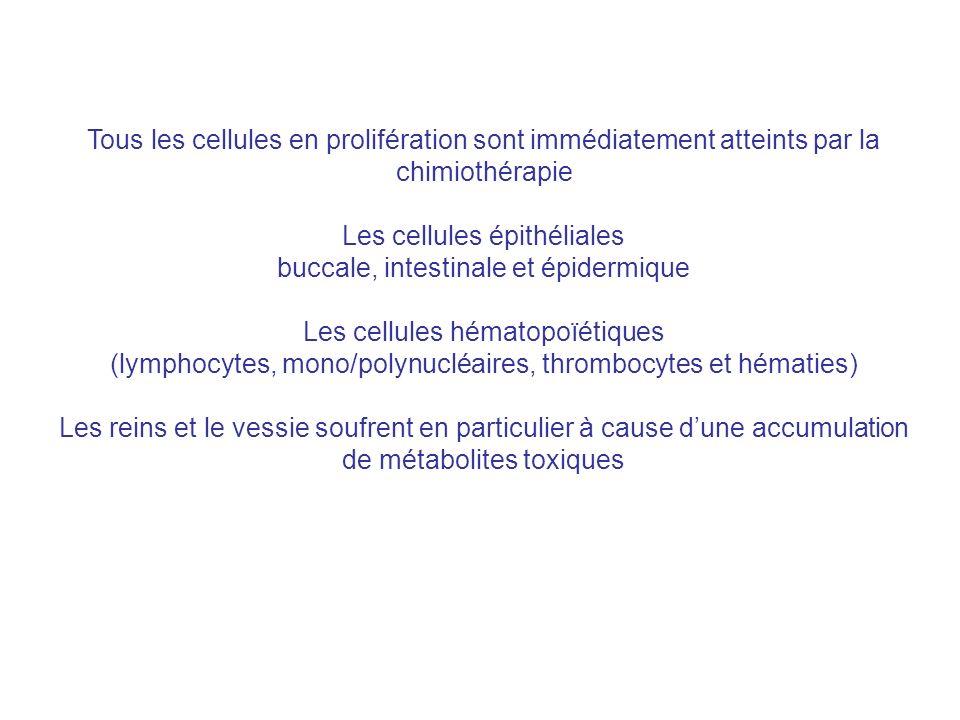 Tous les cellules en prolifération sont immédiatement atteints par la chimiothérapie Les cellules épithéliales buccale, intestinale et épidermique Les