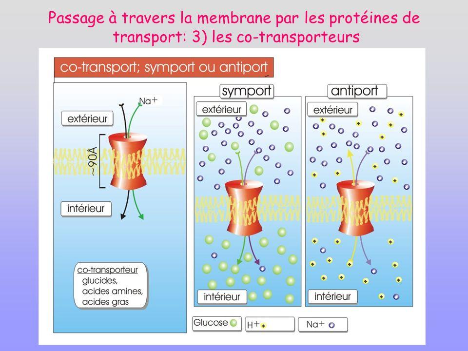 Passage à travers la membrane par les protéines de transport: 3) les co-transporteurs