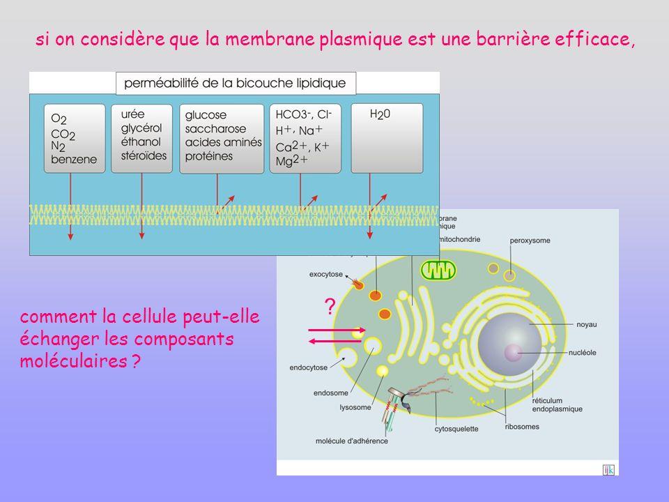 si on considère que la membrane plasmique est une barrière efficace, comment la cellule peut-elle échanger les composants moléculaires .