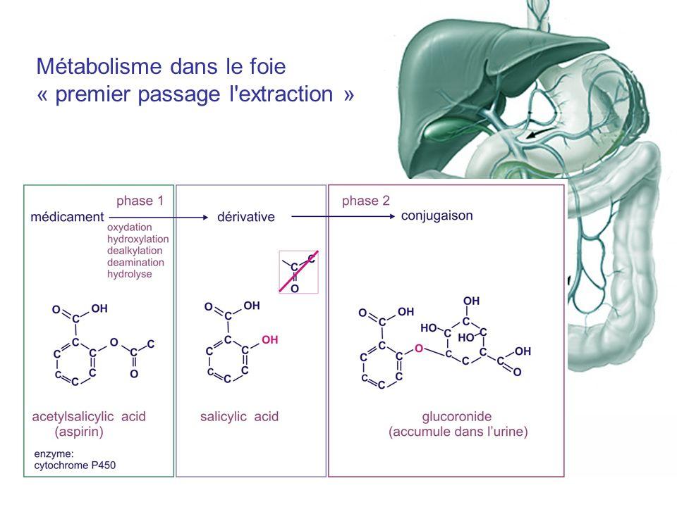 Figure 8.1 Métabolisme dans le foie « premier passage l'extraction »