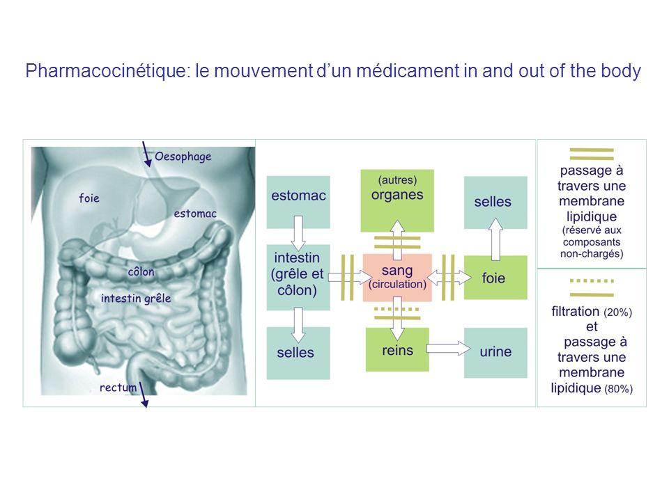 Compartiment réservé aux médicaments non-polaires, par exemple thiopental (anesthétique) Poids relatif des différents compartiments fluide du corps