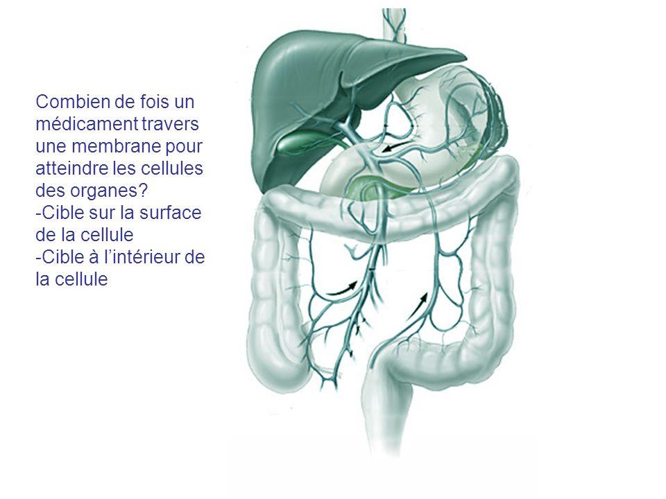 Combien de fois un médicament travers une membrane pour atteindre les cellules des organes? -Cible sur la surface de la cellule -Cible à lintérieur de