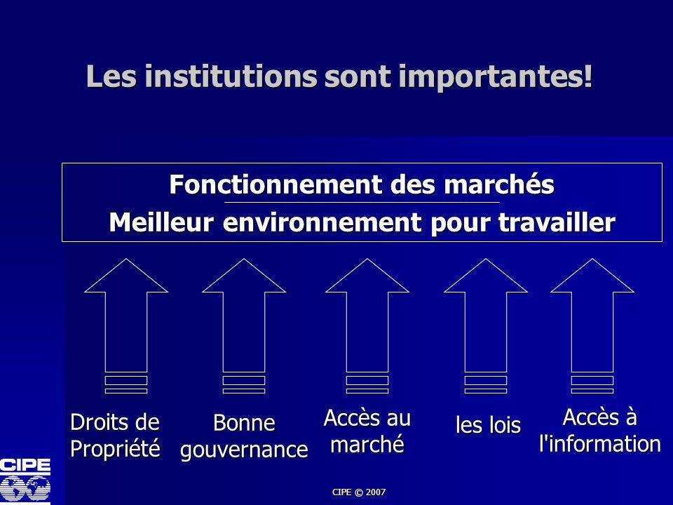 CIPE © 2007 Les institutions sont importantes! Fonctionnement des marchés Meilleur environnement pour travailler les lois Bonne gouvernance Droits de