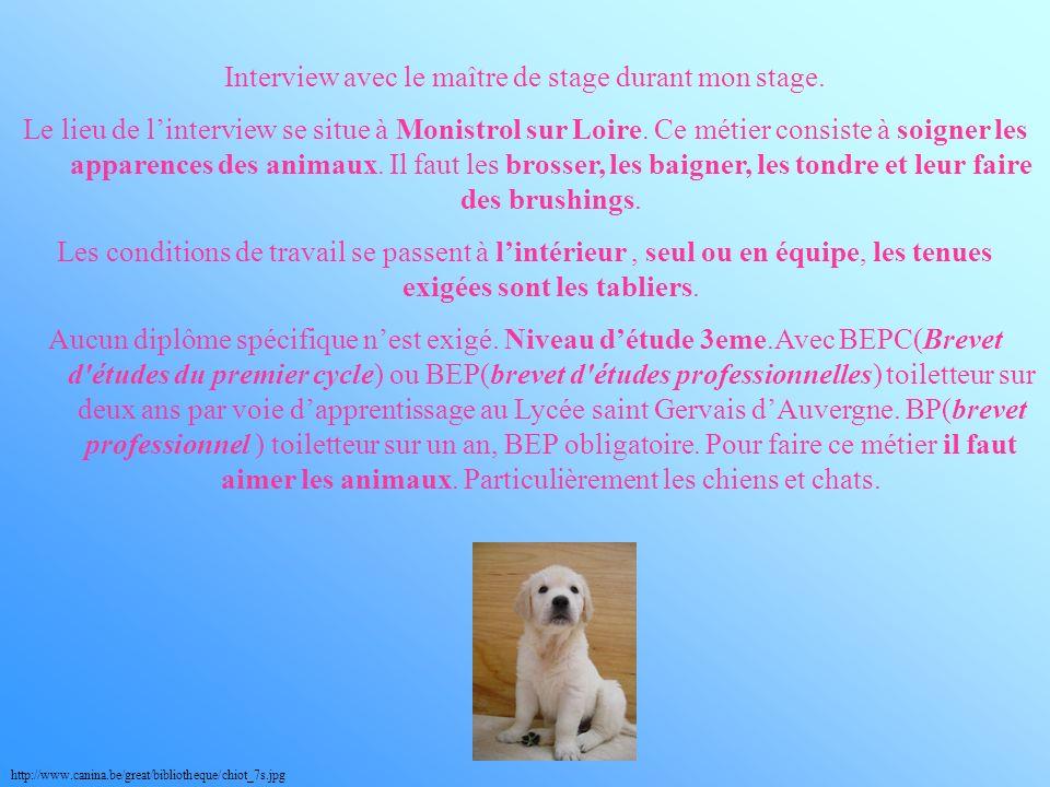 Les qualités quil faut sont la patience, aimer les animaux, psychologie des animaux et être rigoureux.